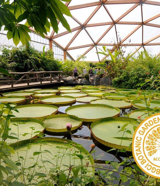 BGCI botanical garden