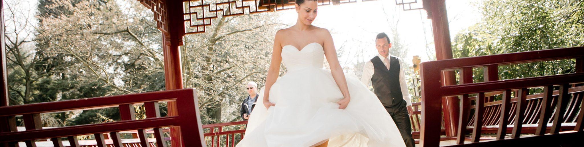 Vier je bruiloft in een van Europa's mooiste dierentuinen: Diergaarde Blijdorp