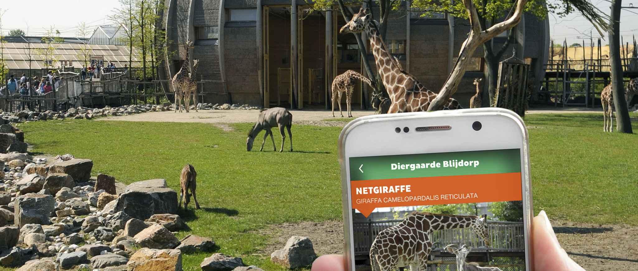 dierentuin rotterdam blijdorp openingstijden