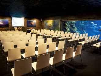 Haaienzaal zakelijk bijeenkomst event
