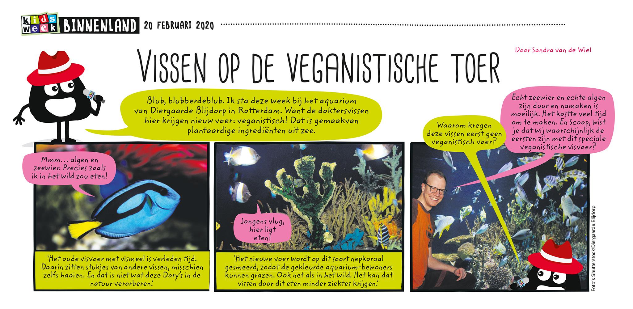 vegan visvoer strip uit Kidsweek