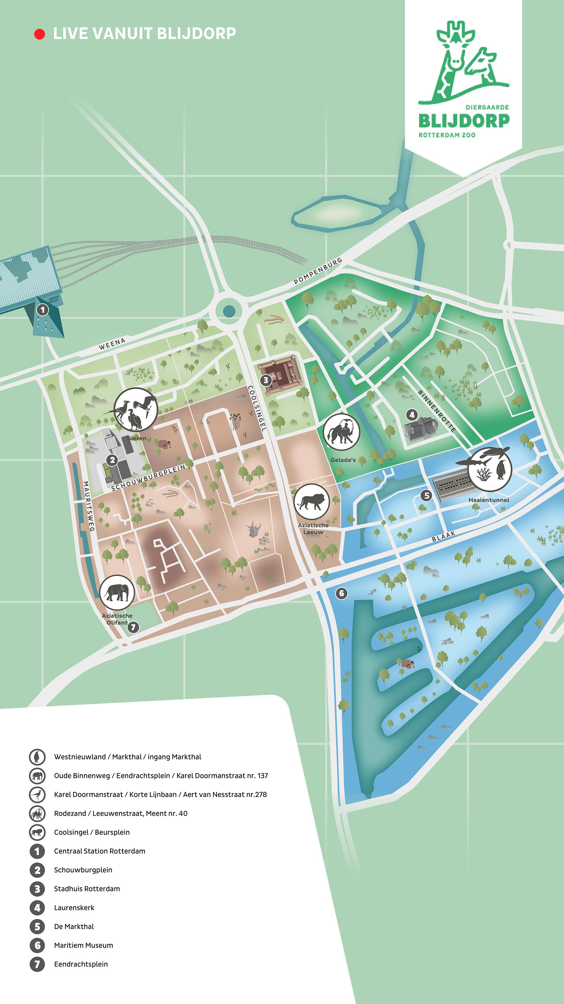 stadsplattegrond met de locaties van de live dierenwebcams in centrum Rotterdam