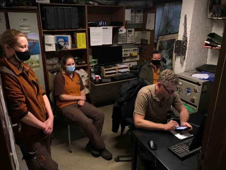 verzorgers kijken gespannen naar webcam olifant